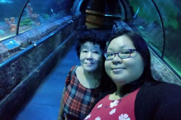 terowongan seaworld